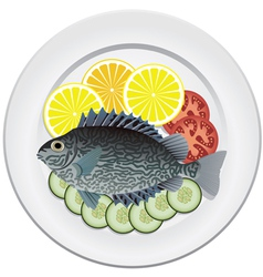 fish and vegetables vector image vector image