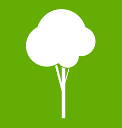 fluffy tree icon green vector image