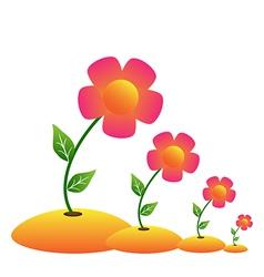 grow flower vector image