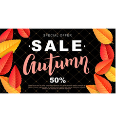 autumn sale design flyer vector image