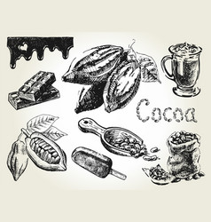 Cocoa set engraving vector