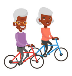 Senior couple riding on bicycles vector