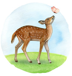 watercolor beautiful realistic fawn and butterfly vector image
