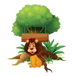 A lion in front of an empty wooden signboard vector