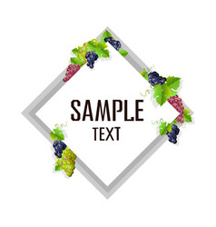 card template with grapes vector image