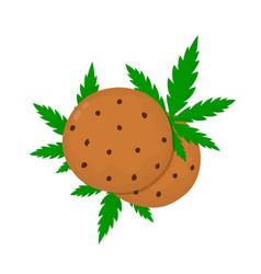 chocolate cookies with marijuana leaf vector image
