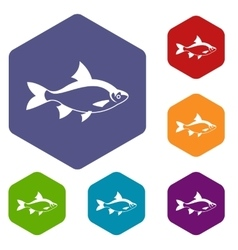 River fish icons set vector