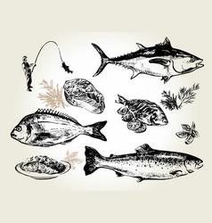 fish set drawn vector image