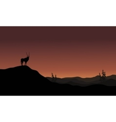On hills antelope landscape silhouette vector image vector image