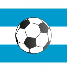 flag of Argentina and soccer ball vector image vector image