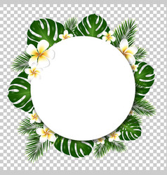 Banner with palm and monstera tree leaf vector