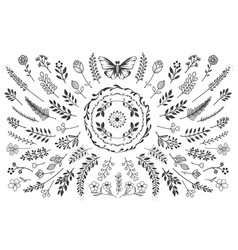 Bloom nature collection vector