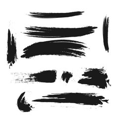 Brush template design vector