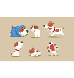 cute beagle dog in various poses collection funny vector image