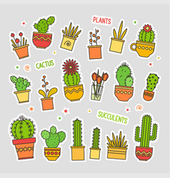 Linear design cacti and flowers in pots vector