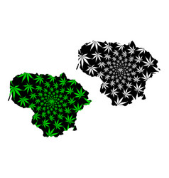 Lithuania - map is designed cannabis leaf vector