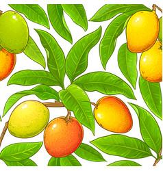 Macadamia branches pattern vector