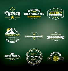 set hipster vintage labels logotypes badges vector image