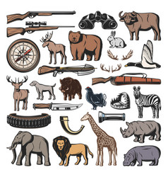 weapon hunting sport wild animals vector image