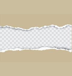 Brown ripped paper background with transparency vector