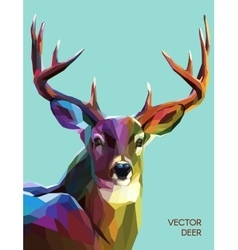 Deer polygonal eps 10 vector image