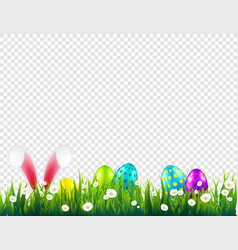 Easter eggs on grass with bunny rabbit ears set vector