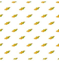 Seesaw pattern cartoon style vector image