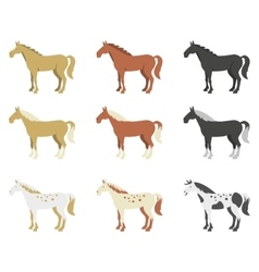 A set of horses of different breeds and color vector image