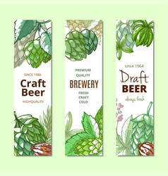 beer hop vertical banner hand drawn set vector image