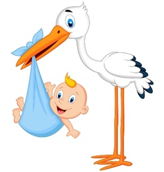 Cute cartoon stork carrying baby vector image
