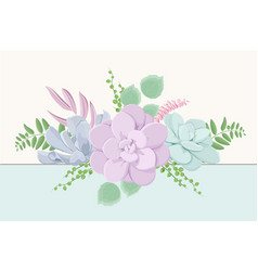 echeveria succulent flowers fern greenery mix vector image