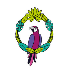 exotic parrot bird leaves tropical vector image