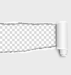 Oblong snatched from left side to right hole vector