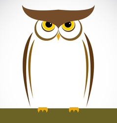 Owl vector image