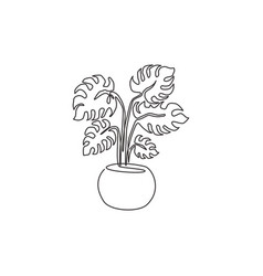 Single continuous line drawing exotic potted vector