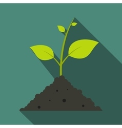 Green sprout in the ground vector