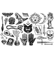 mystical magic boho elements witchcraft vector image