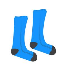 Pair of socks vector