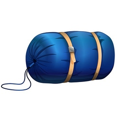 Sleeping bag vector image