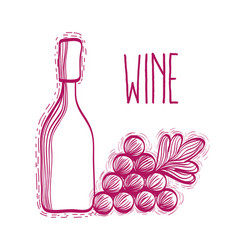 Wine bottle with grape fruit vector