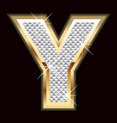 y bling bling vector image