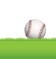 Baseball in the Grass vector image vector image