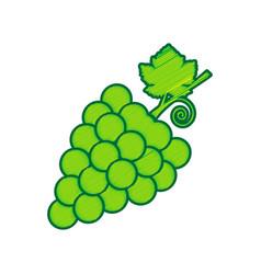 grapes sign lemon scribble vector image vector image