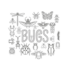 Insects icon flat style 24 pieces in set Outline vector image