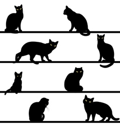pattern with cats silhouettes vector image vector image