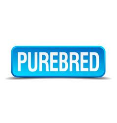 Purebred blue 3d realistic square isolated button vector