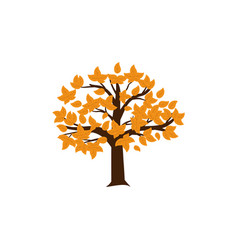 autumn tree icon design template isolated vector image