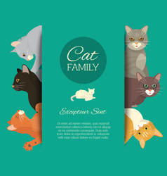 Cats family show banner grooming or veterinary vector