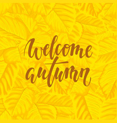 hello autumn text on yellow background with fall vector image