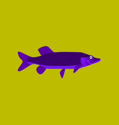 In flat style pike vector